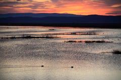 Soluppgång på lägre Klamath nationell djurlivfristad Fotografering för Bildbyråer
