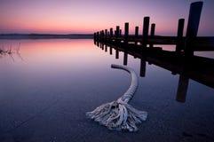 Soluppgång på laken Royaltyfria Foton