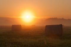 Soluppgång på lantgårdfältet Royaltyfri Bild