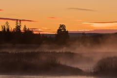 Soluppgång på Madison River Arkivfoton