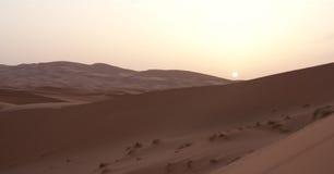 Soluppgång på sandöken Arkivfoton