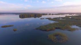 Soluppgång på sjön för sommartid och gräsplanskog, sand och reflexion i vatten, Polen lanscape ovanför sikt arkivfilmer