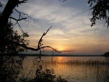 Soluppgång på sjön i sommarskog royaltyfria bilder