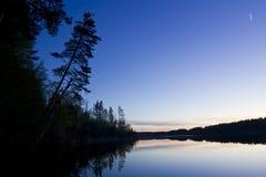 Soluppgång på skogsjön royaltyfri bild