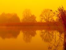 Soluppgång på vattnet Trädreflexion i dammet på dimmig morgon Orange mood royaltyfri foto