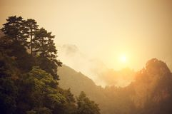 Soluppgång på Wudang berg Royaltyfria Foton