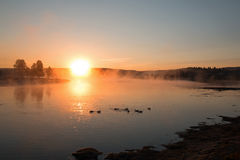 Soluppgång som ändå reflekterar ottamist på kanadensisk gäss i Yellowstone River i Hayden Valley arkivfoton