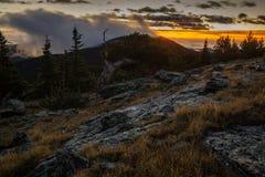 Soluppgång som är hög i Colorado berg Royaltyfri Fotografi