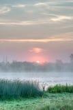 Soluppgång som krönar trädblast Royaltyfri Foto