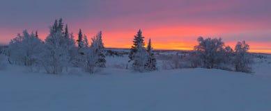 Soluppgång utöver norra polcirkeln Royaltyfri Fotografi