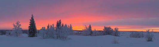 Soluppgång utöver norra polcirkeln Arkivfoto