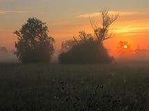 soluppgångar arkivbilder