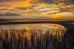 Soluppgångar i himlen, molnen och det härligt för morgon arkivbild