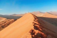 Soluppgångdyner av den Namib öknen, Sydafrika Arkivfoto