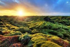 SoluppgångEldhraun landskap fotografering för bildbyråer