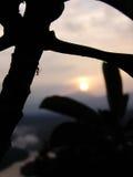 Soluppgångkontur arkivfoto