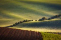 Soluppgånglinjer och vågor med träd på våren Royaltyfria Foton