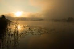 Soluppgångmist på floden målade i sepia Arkivbilder