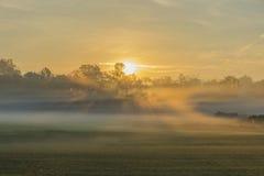 Soluppgångrollbesättningskuggor i dimman Royaltyfria Bilder