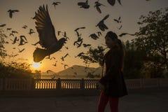 Soluppgångsikt från Jai Mahal Arkivfoton