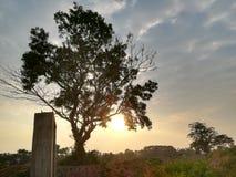 Soluppgångsolnedgång och natur i Sri Lanka arkivfoton