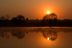 soluppgångvinter Arkivbilder