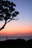 soluppgång för glöd ii Arkivbild