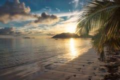 Soluppgång på den tropiska stranden med kokosnöten gömma i handflatan Royaltyfri Bild