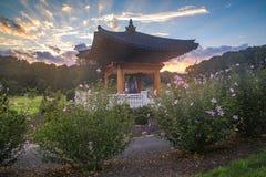 Soluppgång över den koreanska Klocka trädgården Virginia Fotografering för Bildbyråer