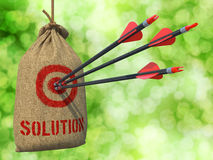 Solution - Arrows Hit in Red Mark Target. Stock Images