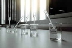 Solution in beakers with dropper. Science laboratory stock photography