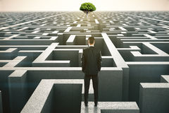 Solution concept tree. Solution concept with businessman looking at a distant tree standing on maze wall. 3D Rendering Royalty Free Stock Photos