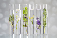 Solution of medicinal plants and flowers - Royalty Free Stock Photos
