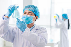 Solution. Professional laboratory worker looking at flask with liquid solution Royalty Free Stock Images