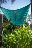 Solution of tarpaulin preventing plants drying from heat in summertime giving them shade, turkey Stock Images