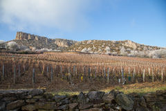 Solutre Burgundy, France. The rock of Solutre, at Le Morvan, France Stock Photography