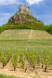 Solutre Rock with vineyards. La Roche de Solutre with vineyards, Burgundy, France royalty free stock images