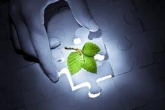 Soluzione verde Immagini Stock