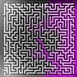 Soluzione viola del giocatore alla vista superiore del labirinto tridimensionale Fotografia Stock Libera da Diritti