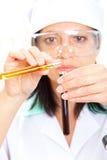 Soluzioni della miscela dell'erba medica in provette Fotografia Stock