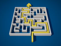 Solving the Maze Royalty Free Stock Photography