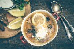 Solyanka - minestra tradizionale russa della carne Immagini Stock
