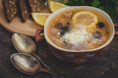Solyanka - minestra tradizionale russa della carne Immagine Stock