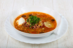 Solyanka mix soup Royalty Free Stock Images