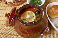 Solyanka on the plate. Solyanka, Russian soup with beef,sausage,chicken and lemon, olives Stock Photography