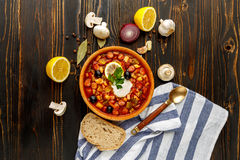 Solyanka - Russian traditional meat soup Royalty Free Stock Images
