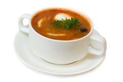 Solyanka - russian and ukrainian cuisine Stock Photography