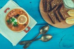 Solyanka - rysk traditionell köttsoppa Arkivfoto