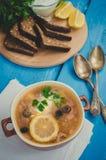 Solyanka - rysk traditionell köttsoppa Fotografering för Bildbyråer