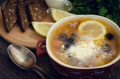 Solyanka - rysk traditionell köttsoppa Royaltyfri Foto